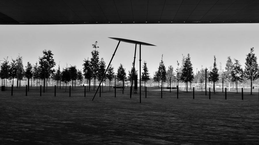Campusbelval Luxembourg Tree Tranquil Scene No People Black And White Huaweiphotography HuaweiP9 Outdoors ARCHITECT Leicacamera Huawei P9 Leica Mobilephotography Campus Life Fresh On Eyeem  Monochrome Photography