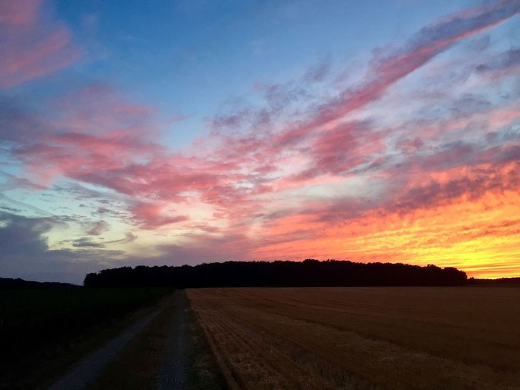 Sunset Nofilter Farm Ohio
