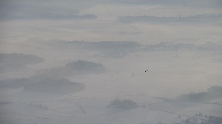 Fog Beauty In