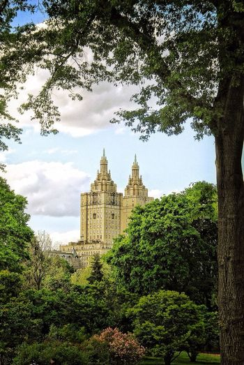 Beautiful View from CentralPark in New York Naturelovers