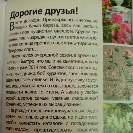 #текст #читать #журнал #2013 2013 Журнал читать текст