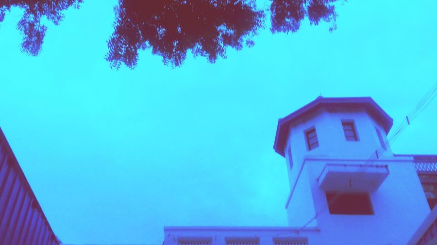 Architecture Low Angle View Built Structure Building Exterior Blue No People Tree Outdoors Roof Day Sky Nature First Eyeem Photo Afterrain🌿 Simplecaptures