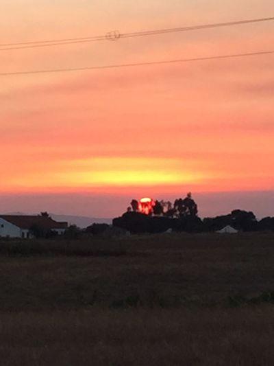 Golden Moment sunset Enjoying Life