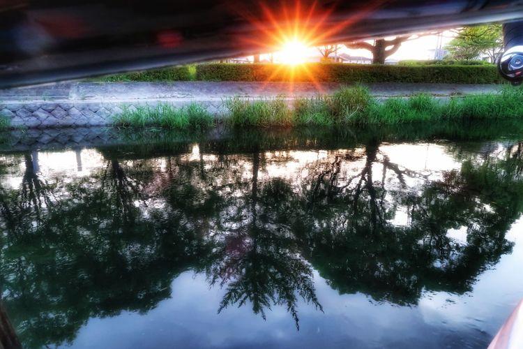 朝 朝日 日の出 朝チャリ サイクリング 川 川沿い 自転車 ロードバイク 水面 木 森 Water Reflection Water Reflections Nature Beauty In Nature Tree Forest Sun Morning Morning Sun Sunrise 写真好きな人と繋がりたい Springtime