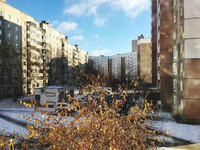Architecture Building Exterior Built Structure Outdoors Day City Sky No People Nature Block Of Flats Citylife Houses Multifamily Houses Apartment Buildings Apartment View Leaves Autumn Leaves Snow