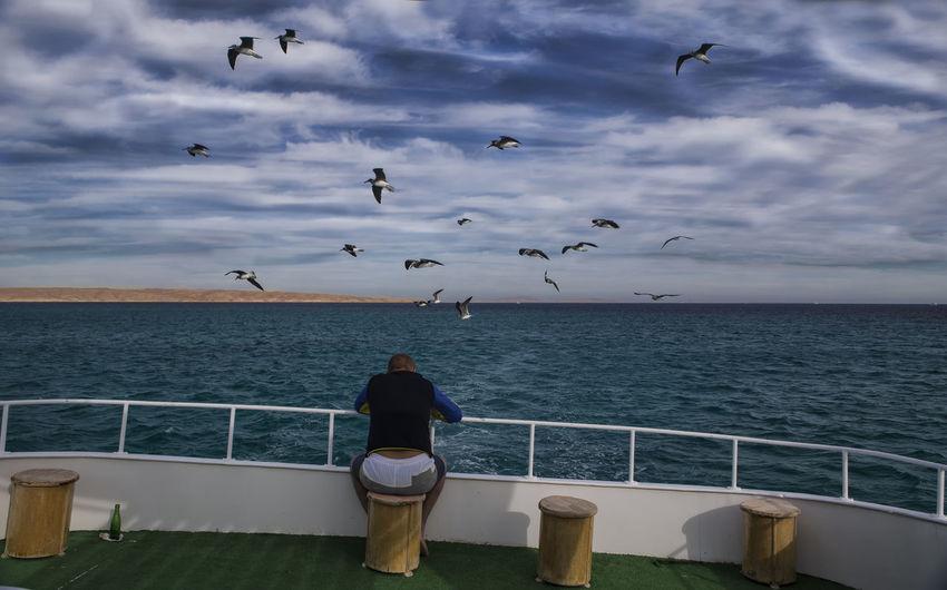 Blue Sea Boat Hughada Hurghada Hurghada, Egypt, Summer, Sun, Boats, Travel, Entertainment, Holidays, Discotheque Hurghada,egypt Looking Out Over The Sea Man Alone Sea View Seagull Seagulls Seascape Photography