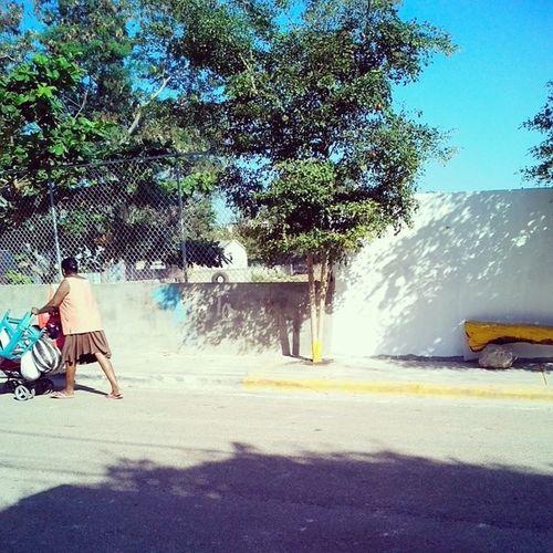 Marchanta. Streetphoto Lightsandshadows Photojournalism
