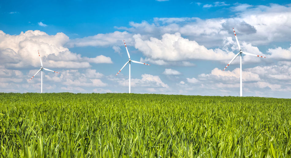 Agriculture Alternative Energy Cloud - Sky Crop  Day Electricity  Environmental Conservation Environmental Issues Farm Field Fuel And Power Generation Green Color Industrial Windmill Nature Outdoors Power Supply Renewable Energy Rural Scene Sky Sustainable Resources Technology Wind Wind Power Wind Turbine Windmill