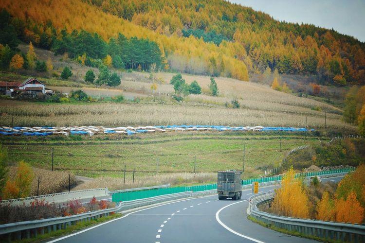 Road passing through landscape during autumn