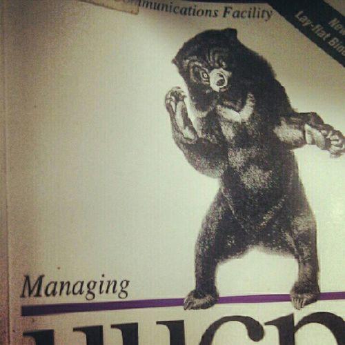 """méďa"" Bear NTK Library Knihovna"