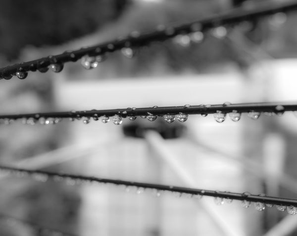 Raindrops on a washing line Black And White Photography Close-up Damp Depressing Days Drop Focus On Foreground Full Frame Lines And Shapes No People Rain Raindrops Selective Focus Washing Water Weather Wet