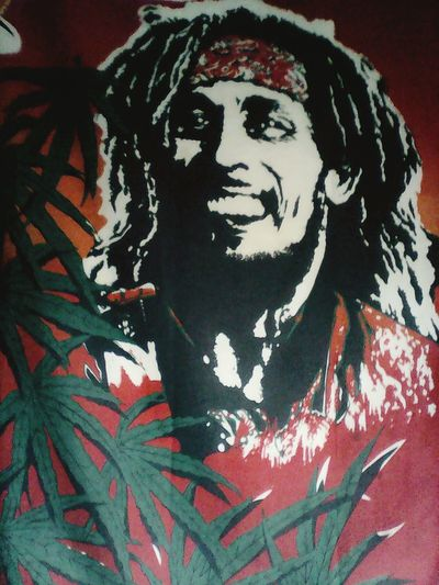 I&I Chillin Out At Home Taking Photos Love Bob Marley Flags One Love Rastafari