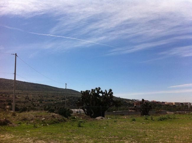 Landscape Landscape_Collection Taking Photos Enjoying The View Green Blue Sky Clouds Clouds And Sky No Filter