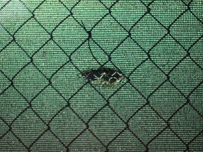 Chainlink Fence Safety Security Protection Metal Full Frame Backgrounds Green Color Day No People Close-up Pattern Outdoors