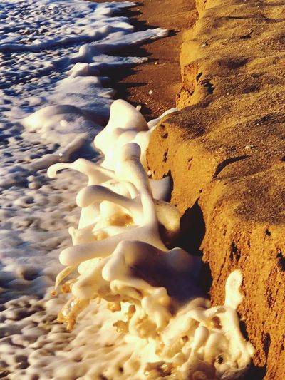 Sea Foam Crashingwaves Sea Foam Land Sand Beach Nature High Angle View No People Beauty In Nature Day Water Pattern Scenics - Nature Backgrounds Sea