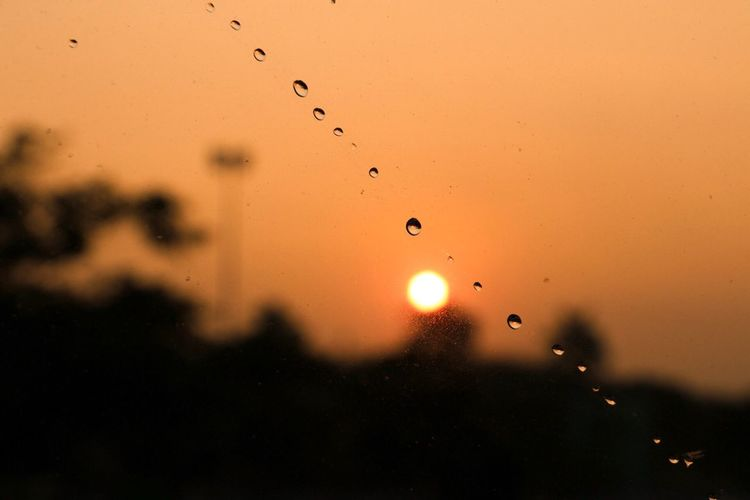 Close-up of water drops on orange sky