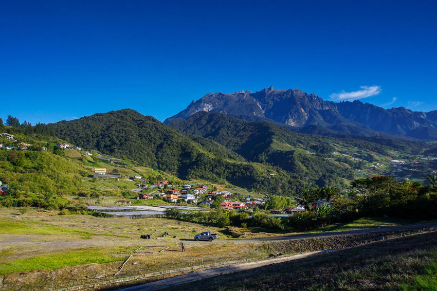 Kinabalu National Park Beauty In Nature Blue Clear Sky Day Kundasang Sabah Malaysia Landscape Malaysia Mountain Mountain Range Nature No People Outdoors Scenics Sky Tranquil Scene Tranquility Travel Destinations Tree