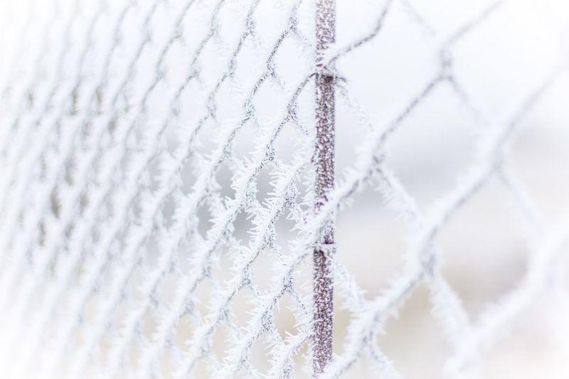 White Color Outdoors Winter Ice Cold Eis Kalt Gefroren Zaun Shades Of Winter