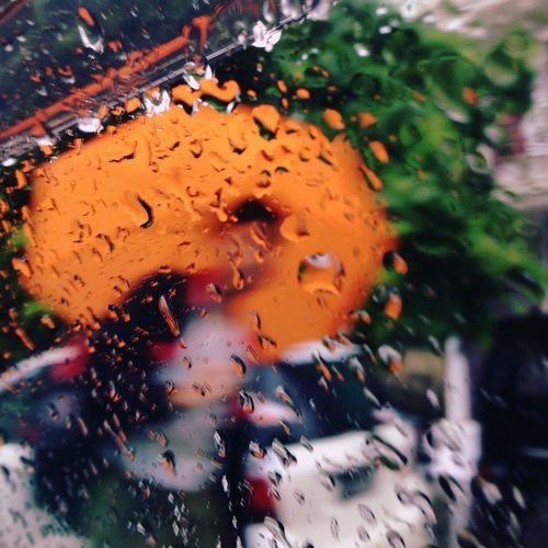 """""""A stranger in the rain"""" Hanging Out Taking Photos Relaxing Iphotography Iphoneonly Intherain RainingSeason ,"""