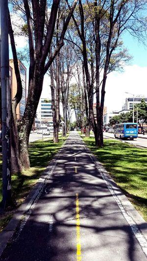 Bogotá Bike Urbanphotography Urban Landscape Urban Biking