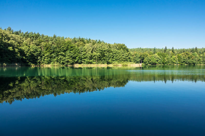 Landscape on a lake. Holiday Mecklenburg-Vorpommern Relaxing Beauty In Nature Coast Day Germany Idyllic Scenery Lake Landscape Nature No People Outdoors Reeds Scenics Shore Sky Tourism Travel Destinations Tree Vacation Water