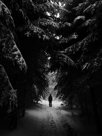 Astronaut on earth Blackandwhite Forest Space Real People Leisure Activity Rear View Plant Nature Walking One Person Outdoors Land