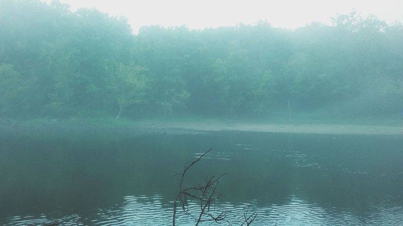 Water Lake Nature Fog Tree Outdoors No People Scenics Day Tranquility Beauty In Nature Morning Sky Tennessee Tranquil Scene Animal Wildlife Animal Themes Lake View Stream Creak 💦 Noon First Eyeem Photo EyeEm Selects