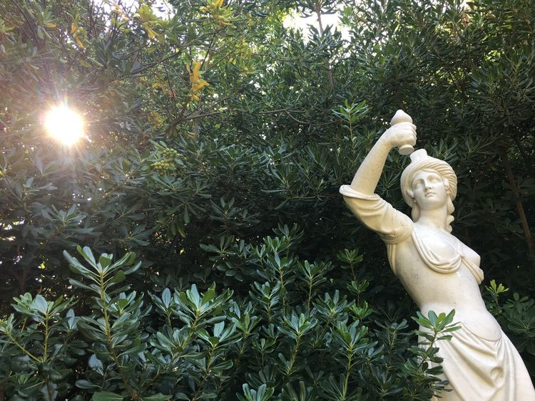 EyeEm Selects Spirituality Sculpture Statue Palas Godess