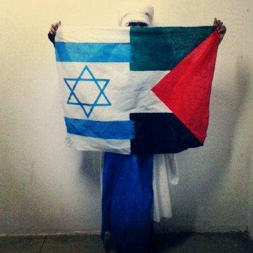Paz e igualdade! Conflitos IsraelXPalestina Mundo_Novo_Possível Bandeira confeção sociologia Art Is Everywhere