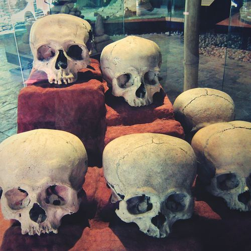 Skulls at the site museum of Tonina Mayan Ruins Mayan Travel Destinations Ancient Civilization Tourism Mexico Archaeology Maya Maya Ruins Tonina, Chiapas No People Indoors  Skull Spring Break 2017 Travel Chiapas Miles Away