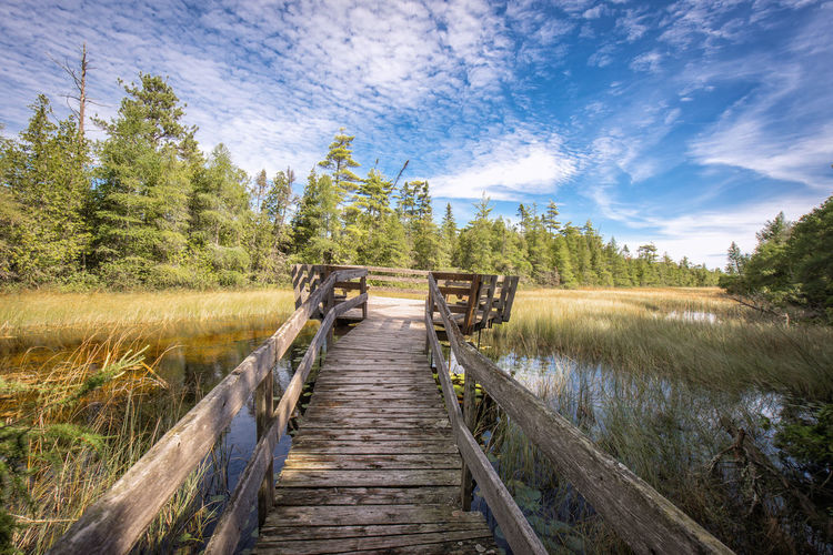 Old wooden jetty over swamp against sky