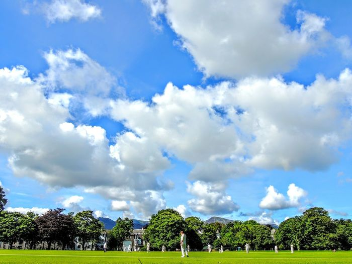 Cloud - Sky Sky Tree Plant Nature Day Beauty In Nature Scenics - Nature No People Outdoors Environment Landscape Architecture Tranquility Blue Park - Man Made Space Green Color Tranquil Scene Park Growth Cricket Field Cricket Match