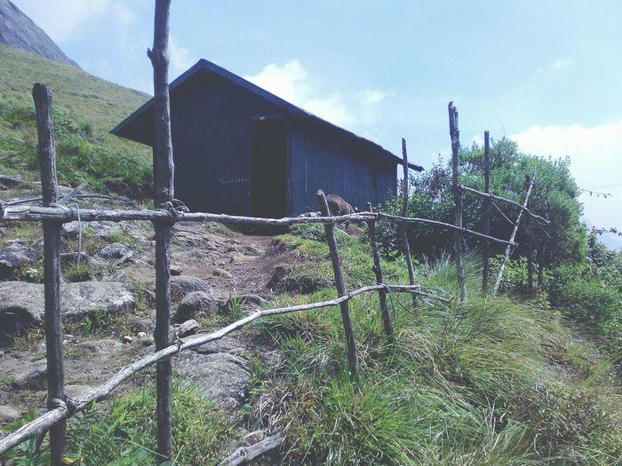 At Hill top Outdoors Travel Travel Destinations Landscape Munnar India Nature Kerala Rural Scenes Farmhouse