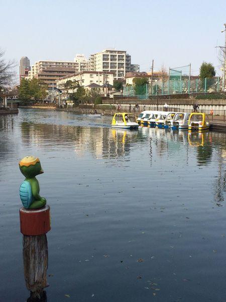 Ordinary Day River