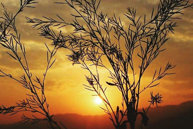 No Filter Sprashre Sunset Hometown Lovefornature
