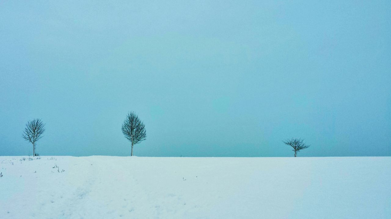 Silhouette Trees On Snow Covered Field Against Clear Blue Sky