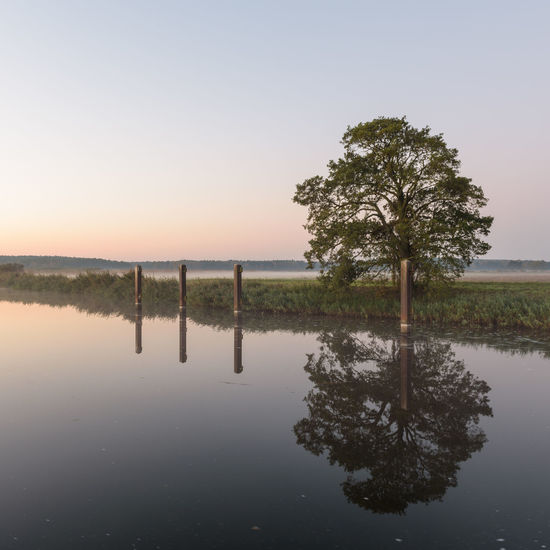 Brandenburg Hohennauener See Naturpark Westhavelland Beauty In Nature Clear Sky Day Havelland Hohennauen Lake Nature No People Outdoors Reflection Scenics Sky Tranquil Scene Tranquility Tree Water Waterfront