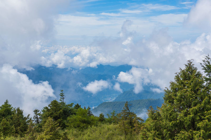 Taiwan Beauty In Nature Cloud - Sky Day Environment Green Color Growth Idyllic Land Landscape Mountain Mountain Peak Nature No People Non-urban Scene Outdoors Plant Scenics - Nature Sky Tranquil Scene Tranquility Tree 台灣 大雪山