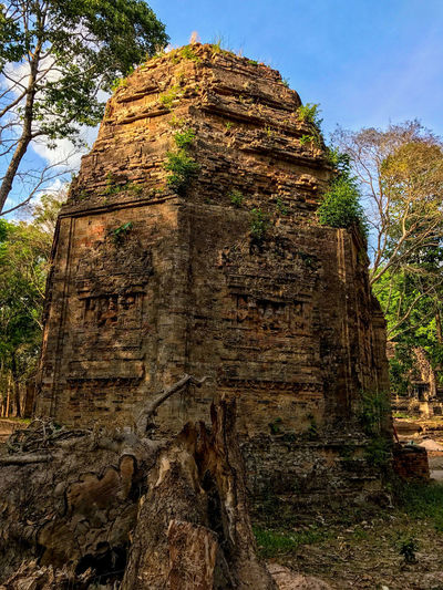 Ruins of pre-Angkorian Sambor Prei Kuk Temple in central Cambodia Angkor Wat, Cambodia Archeology Ruins Architecture History No People Temple Tree