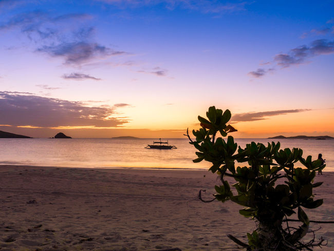 When solitude is better than anything else Beach Beauty Calaguas Dusk End Horizon Over Water Landscape Lone Nature No People Outdoors Palm Palm Tree Philippines Postcard Romantic Sky Sea Silhouette Sky Solitude Sunset Travel Destinations Tropical Climate Vacations Water