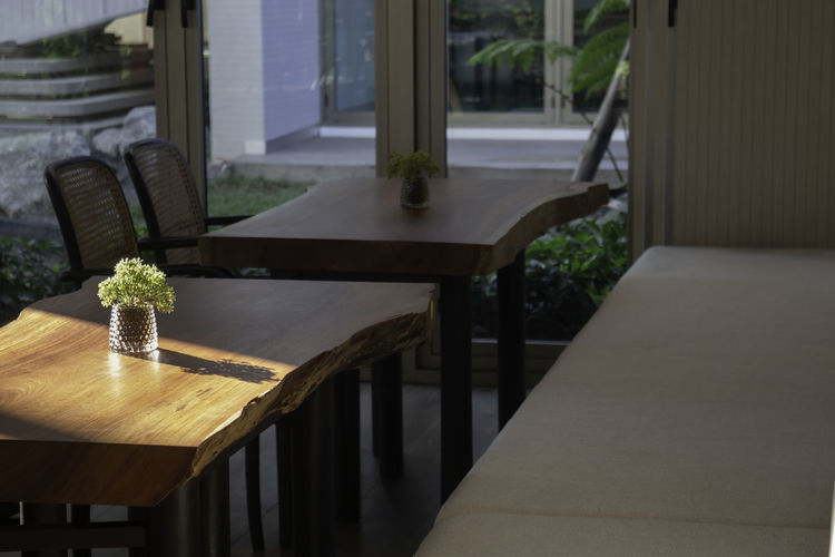 Potted plants on table in restaurant by building