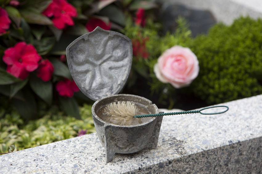 Close-up Day Focus On Foreground Freshness Grave Grave Decoration Holy Water Shell Nature No People Outdoors