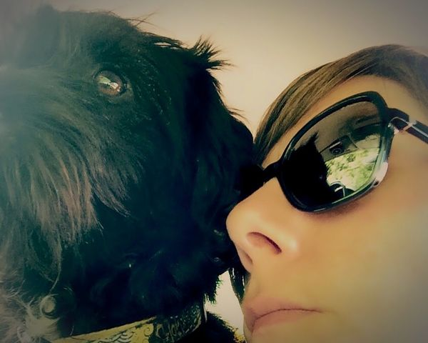 Selfiewithdog Mydog Sunglasses Domestic Animals Dog Mammal Close-up Portrait Real People Pets One Person Animal Themes People Indoors  Day Young Adult