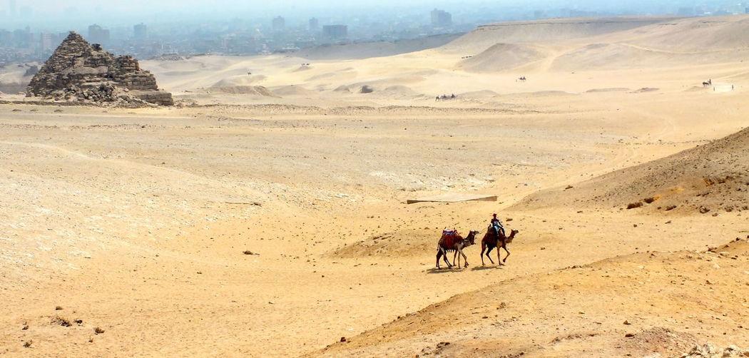 Pyramid Arid