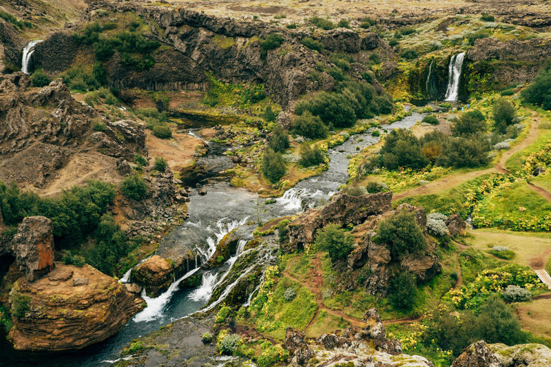 Land of milk and honey Iceland Shangri-La Adventure Beauty In Nature Cliff Day Forest High Angle View Landscape Mountain Nature No People Outdoors River Rock - Object Scenics Travel Destinations Tree Water Waterfall