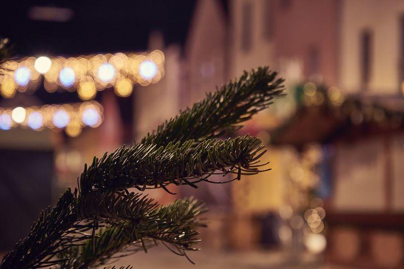Weihnachten Nikolausmarkt besinnlich