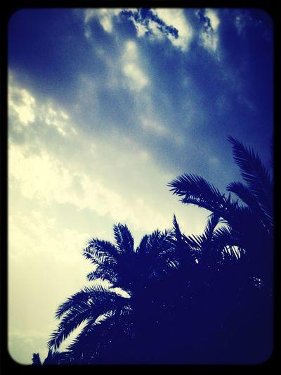 Clouds ♥من تصويري♥