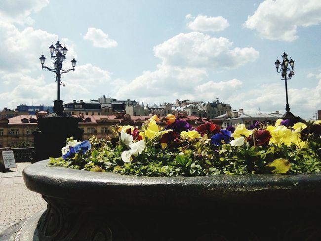 Good Day Flowers ХрамХристаСпасителя Sunlight Hello World Moscow