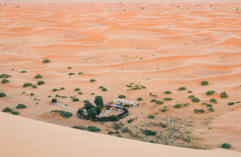 a camp in the desert from above a huge sanddune Water Outdoors Non-urban Scene Tranquil Scene Arid Climate Tranquility Day High Angle View Climate No People Nature Beauty In Nature Scenics - Nature Environment Sand Dune Landscape Desert Sand Land Marokko Backgrounds Aerial View
