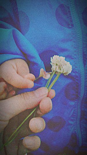 The OO Mission 息子から小さな可愛いプレゼント♡生まれて初めてくれたプレゼント♡♡♡ 1歳8ヶ月 Present 嬉し過ぎるー!!! 可愛過ぎる~♡ 食べちゃいたいくらいめんこ!!! I Love Cute